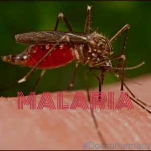 Malaria Prophylaxis UK